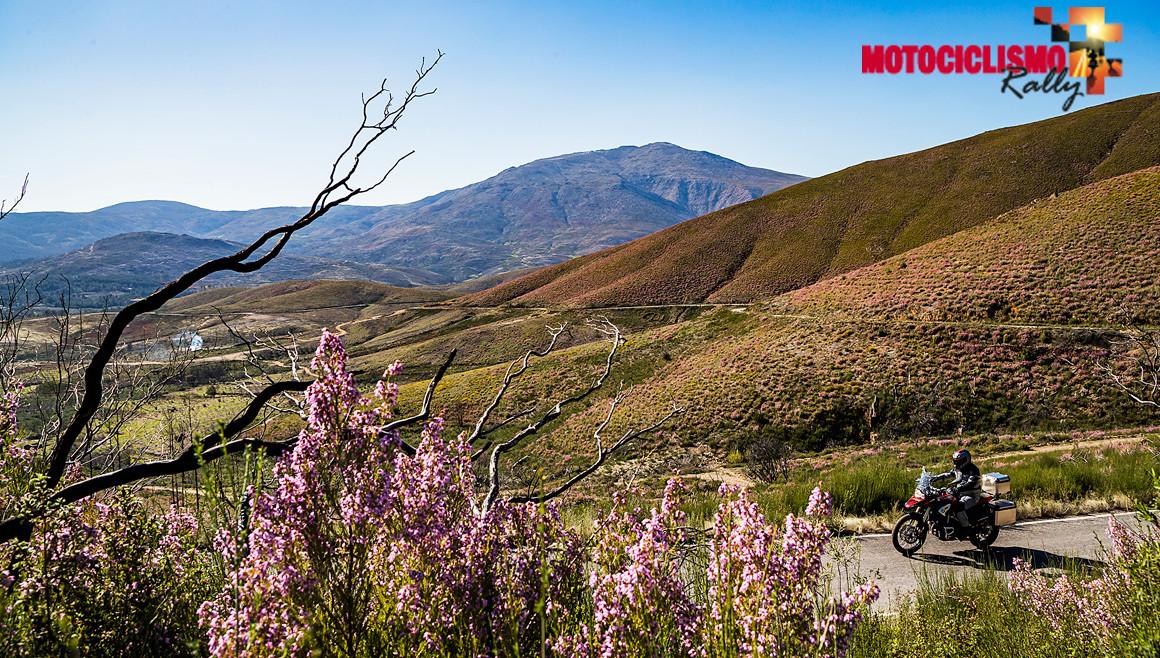 MOTOCICLISMO Rally, ¿aceptas el reto?