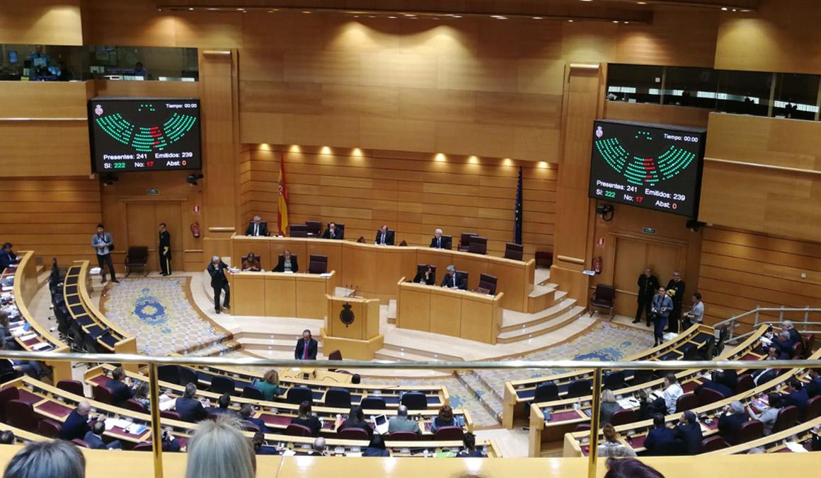 El Senado aprueba la reforma del Código Penal para endurecer las penas por imprudencias al volante