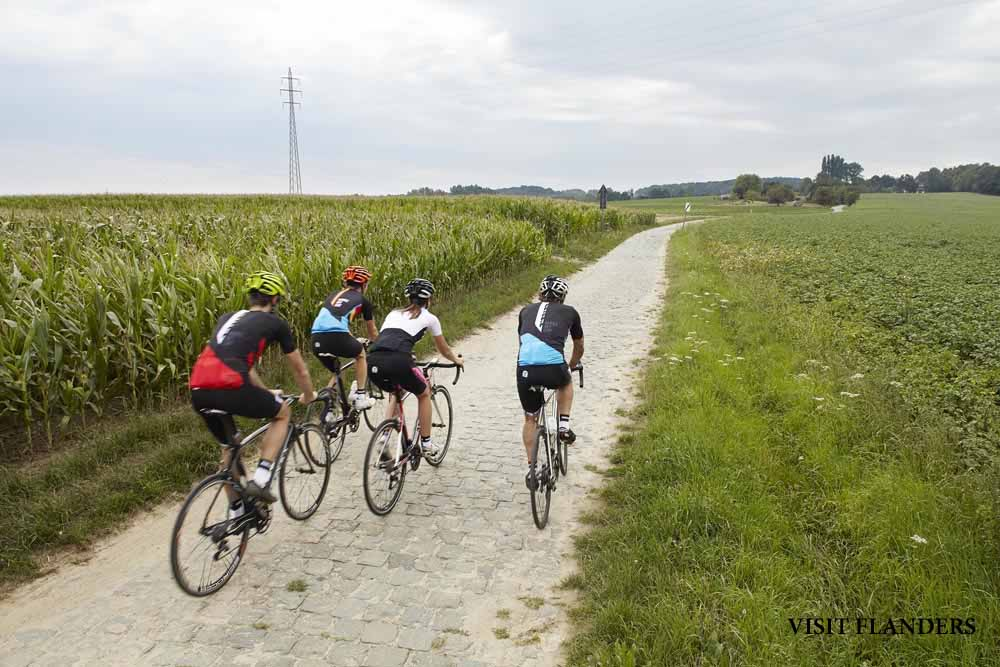 Flandes en verano
